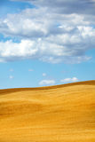 View of typical Tuscany landscape Stock Images