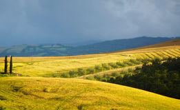 View of typical Tuscany landscape Royalty Free Stock Images