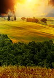 View of typical  Tuscany landscape Stock Photo