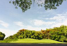 View under big tree in Public Park,Vachirabenjatas Park (Rot Fai Stock Image