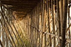 Old bamboo bridge across Mekong in Kampong Cham. View under the old traditional bamboo wooden bridge across Mekong river, Kampong Cham, Cambodia Royalty Free Stock Photo