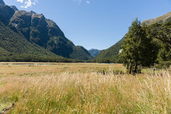 View up grassy valley the flats between the distant mountains Royalty Free Stock Images