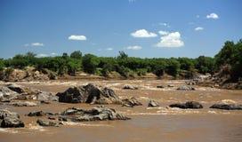 View up Mara River Royalty Free Stock Photo