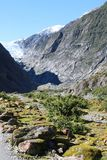 Franz Josef Glacier from valley below the glacier. View up to the Franz Josef Glacier in South Island, New Zealand looking from the valley floor below the royalty free stock image