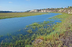 Back bay wetland/estuary at Newport Beach California. View of the upper part of back bay wetland/estuary at Newport Beach California. This area is an important stock images