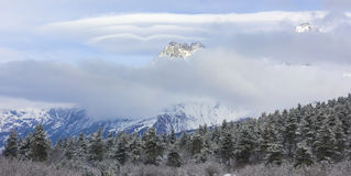View of Ushba mountain. In winter Stock Photo