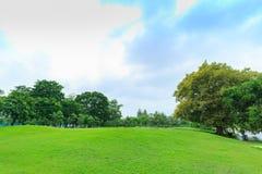 View of Vachirabenjatus Park or Train park in Bangkok. Stock Image