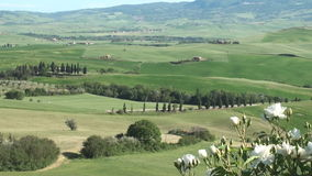 View into Val d´Orcia, Tuscany. View on the green landscape of the Val d´Orcia in Tuscany in spring stock footage