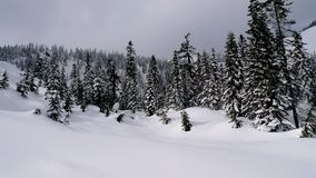 View of a valley. A snow valley in the winter time Royalty Free Stock Images