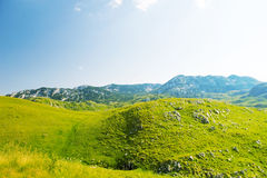 A view of valley Durmitor National Park Montenegro Royalty Free Stock Photo