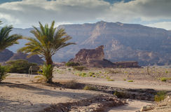 View on the valley of geological Timna park and dry riverbed. Stock Image