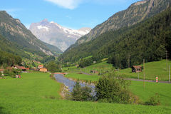 View at valley of Lütschental near Grindelwald with Wetterhorn at the background. Valley of Lütschental direction Grindelwald with the Wetterhorn at the royalty free stock photos