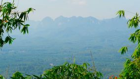 View of the valley with mountains in the background through the bamboo leaves. Typical Asian Landscape. The branches of tree are swaying in the wind. Virgin stock video footage