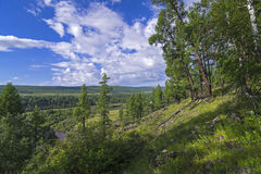 View of the valley of the small river from a forested hillside. Stock Images
