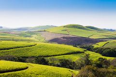A view of the Valley of a Thousand hills near Durban, South Afri. Valley of a Thousand hills landscape. Green hills panorama. South African landmark near Durban Royalty Free Stock Images