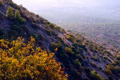 View of the valley of Upper Galilee in the morning Royalty Free Stock Image