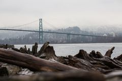 View of Vancouver bridge from beach with driftwood royalty free stock photos