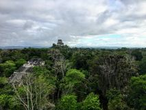 A view of the vast dense jungle of Tikal National Park outside of Flores, Guatemala, in central America. royalty free stock photos