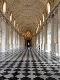 View of the Venaria Reale Royalty Free Stock Image