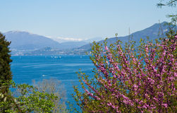 View of Verbania landscape Royalty Free Stock Photo