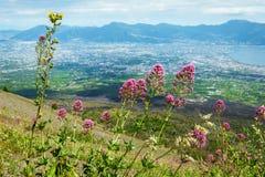 View from Vesuvius volcano Royalty Free Stock Photo