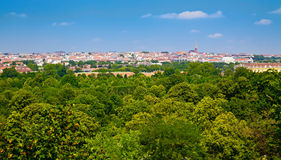 View from Vienna Zoo. View of green trees and houses' rooves from the Vienna Zoo Royalty Free Stock Photo