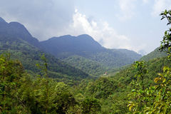 View of vietnamese mountains. In tropical forest of North Vietnam stock images