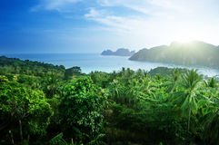 View from view point of  Phi-Phi island Stock Photos