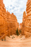 View from viewpoint of Bryce Canyon National Park. Utah USA Royalty Free Stock Photo