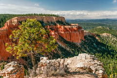 View from viewpoint of Bryce Canyon. Royalty Free Stock Photo