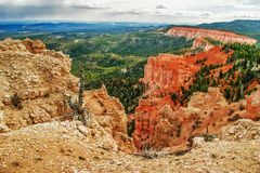 View from viewpoint of Bryce Canyon. Utah. USA Royalty Free Stock Photo