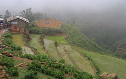 View of village CatCat with rice terraces Stock Photography