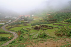 View of village CatCat with rice terraces Royalty Free Stock Photos