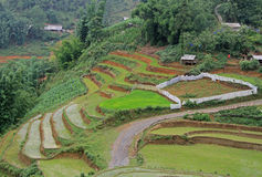 View of village CatCat with rice terraces Stock Photos