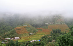 View of village CatCat with rice terraces Royalty Free Stock Photo