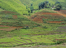 View of village CatCat with rice terraces Stock Image