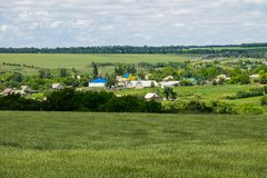View on the village in Ukraine. On summer Royalty Free Stock Images