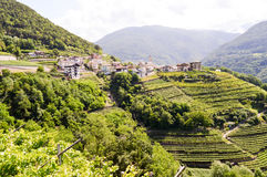 View of a village and vineyards stock image