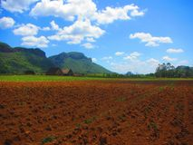 View of vinales valley Cuba UNESCO heritage site. View of vinales valley, Cuba. A UNESCO world heritage site. View of ploughed tobacco fields, mountains mogotes royalty free stock photo