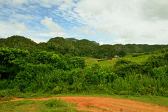 View on the Vinales valley in Cuba Stock Images