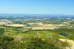 View of vineyard and green field. Montalcino countryside, Tuscany, Italy. Beautiful view of vineyard and green field. Montalcino countryside, Tuscany, Italy royalty free stock photography