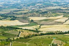 View of vineyard and green field. Montalcino countryside, Tuscany, Italy. Beautiful view of vineyard and green field. Montalcino countryside, Tuscany, Italy stock images