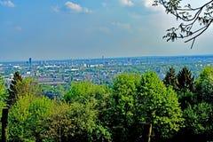 View from the Vineyard Lohrberg on Frankfurt/Main, Germany royalty free stock photo