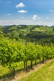 View from vineyard to hills of south styrian wine route Royalty Free Stock Photography