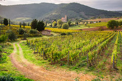 View of the vineyards and the church in Tuscany Royalty Free Stock Photography