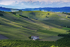 View of the vineyards and hills of Langa Piemonte Italy. View over the vineyards and hills of Langa Piemonte Italy during a thunderstorm royalty free stock photography