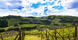 View of the vineyards and hills of Langa Piemonte Italy. View of the vineyards and the hills of Langa Piemonte Italy, a spectacular cloudy sky stock images