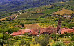 View of Vineyards and Rooftops from Motovun Croatia. Tile rooftops, church steeple and vineyards viewed from a terrace in Motovun Croatia. Summer time image with stock photo
