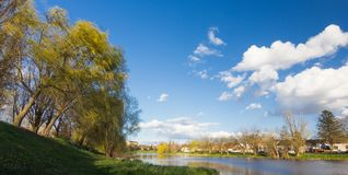 Panorama view over the Bosut river to little town Vinkovci, Croatia. The view of the Vinkovci from the river Bosut. Panorama in early spring with clouds royalty free stock images