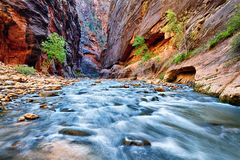 View of the Virgin River Stock Photography